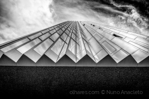 Arquitetura/Paper Planes
