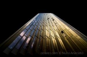 Arquitetura/Golden Brown