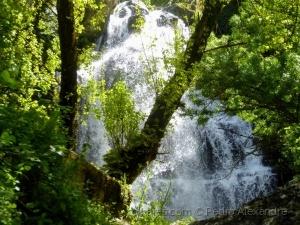 /Espreitando a cascata de Fervença