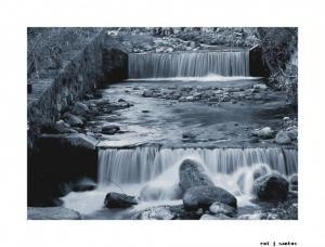 Paisagem Natural/Um rio uma vida
