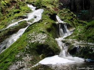 Paisagem Natural/Cascata I