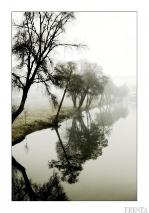 Paisagem Natural/Reflexions I