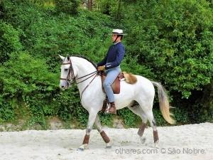 /Festival do Cavalo do Oeste