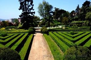 Paisagem Urbana/Jardim Botânico da Ajuda IX