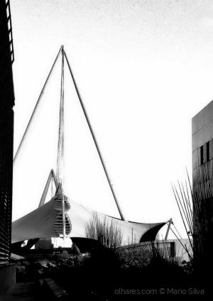 Paisagem Urbana/W/B #19