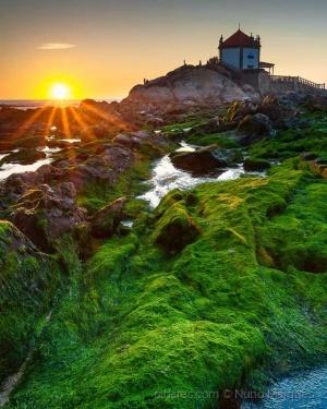 Paisagem Natural/Verde mar