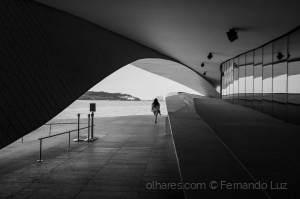 Arquitetura/In the path of light