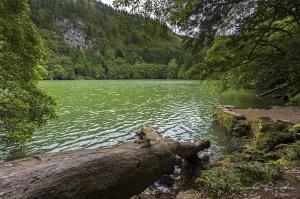 Paisagem Natural/Lagoa do Congro