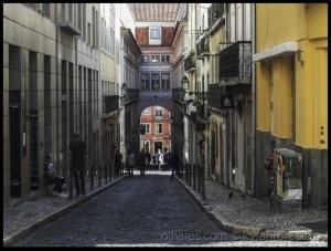 Outros/Não fotografia de rua ,mas uma rua bem longa!