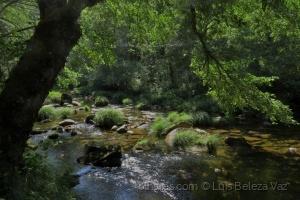 Paisagem Natural/Rio Vez