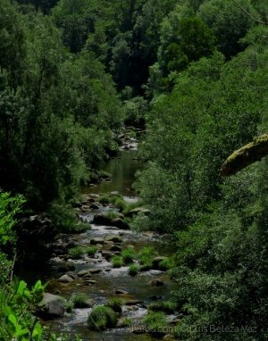 Paisagem Natural/O belo rio Vez