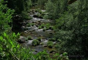 Paisagem Natural/O belo rio Vez II