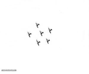 Abstrato/O voo dos passaros - ler