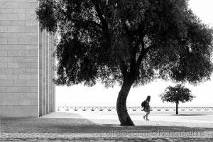 Outros/Entre Árvores