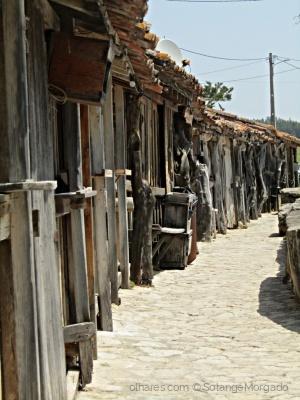 /Nas salinas de Rio Maior