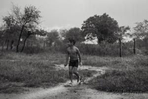 Fotojornalismo/Quando chove no sertão...