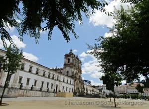 /Mosteiro de Santa Maria de Alcobaça