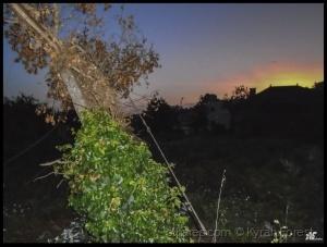 Paisagem Natural/Dawning !