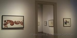 /Obras de Nadir Afonso...