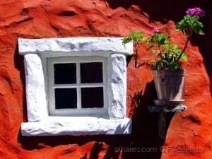 /Magic Window