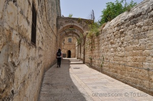História/PELA ANTIGA CIDADE DE JERUSALÉM