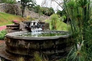 Paisagem Natural/Jardim de Angra do Heroísmo.