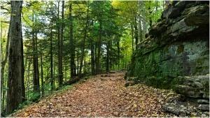 Outros/Trail