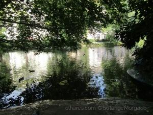 Paisagem Urbana/Natureza exuberante