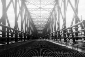 Paisagem Natural/Ponte D.Amélia