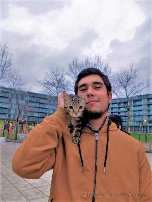 Retratos/Dois Gatos