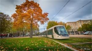 Paisagem Urbana/Outono na cidade
