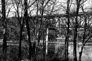 /A ponte sobre lago.........