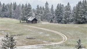 Paisagem Natural/A primeira neve