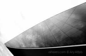 Arquitetura/Museu Oscar Niemayer