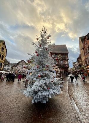 Paisagem Urbana/Tempo de Natal